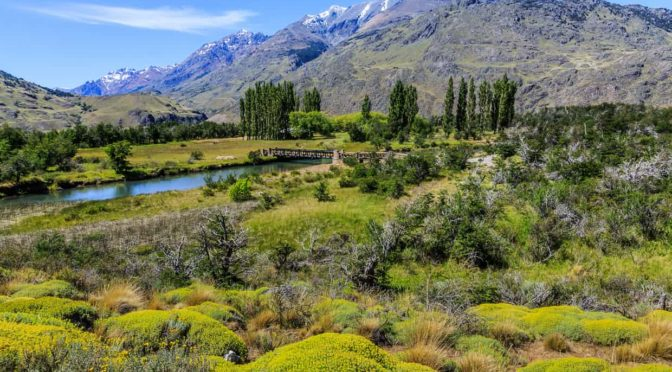 Chile creates five national parks over 10m acres in historic act of conservation